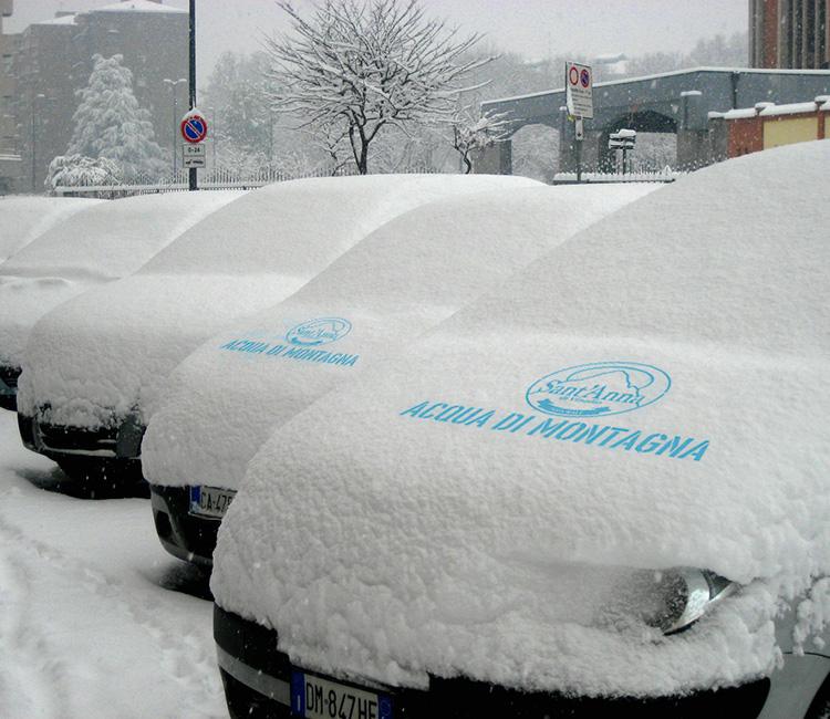 Jungle   Snow advertising