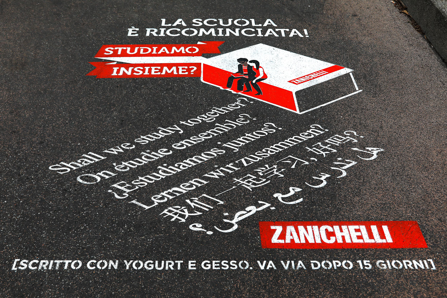 Jungle Zanichelli 5